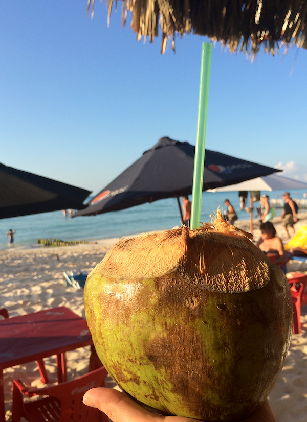 Isla Mujeres kokos