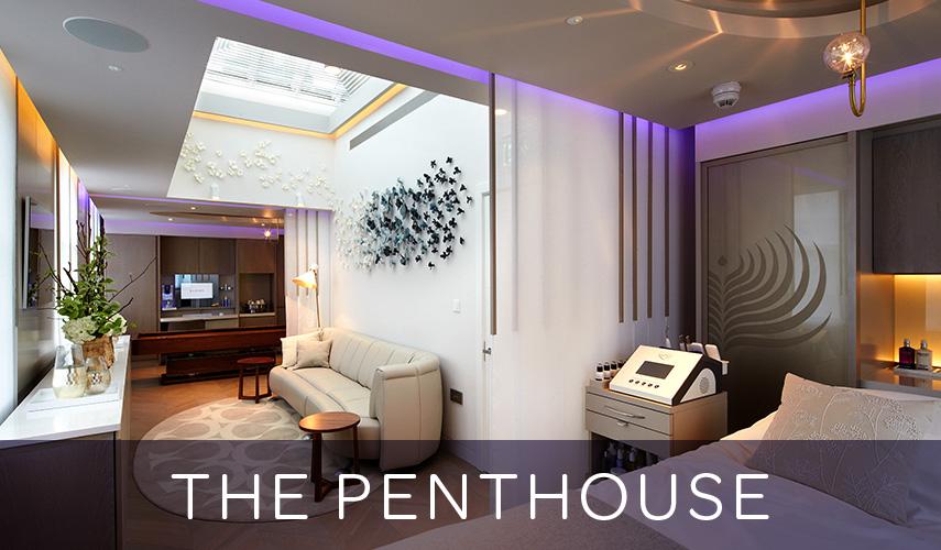 855x500-Penthouse_INFO