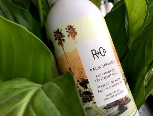 R+co palm Spring pre shampoo hair mask |skonhetssnack.se IMG_4143